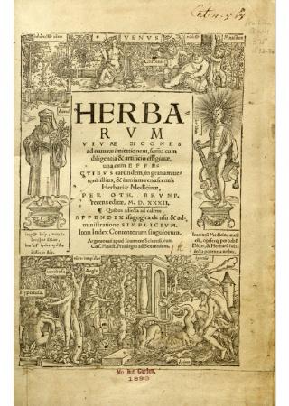 Herbarum vivae eicones ad naturae imitationem