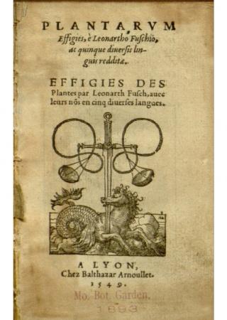 Plantarum effigies